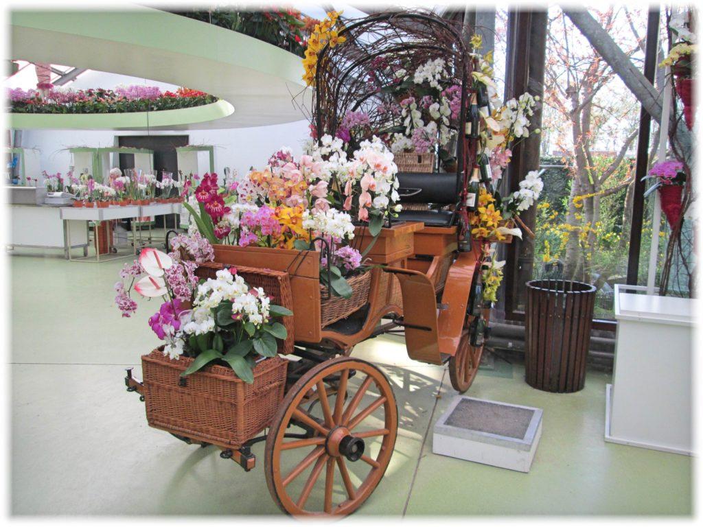 キューケンホフ花のデコレーション