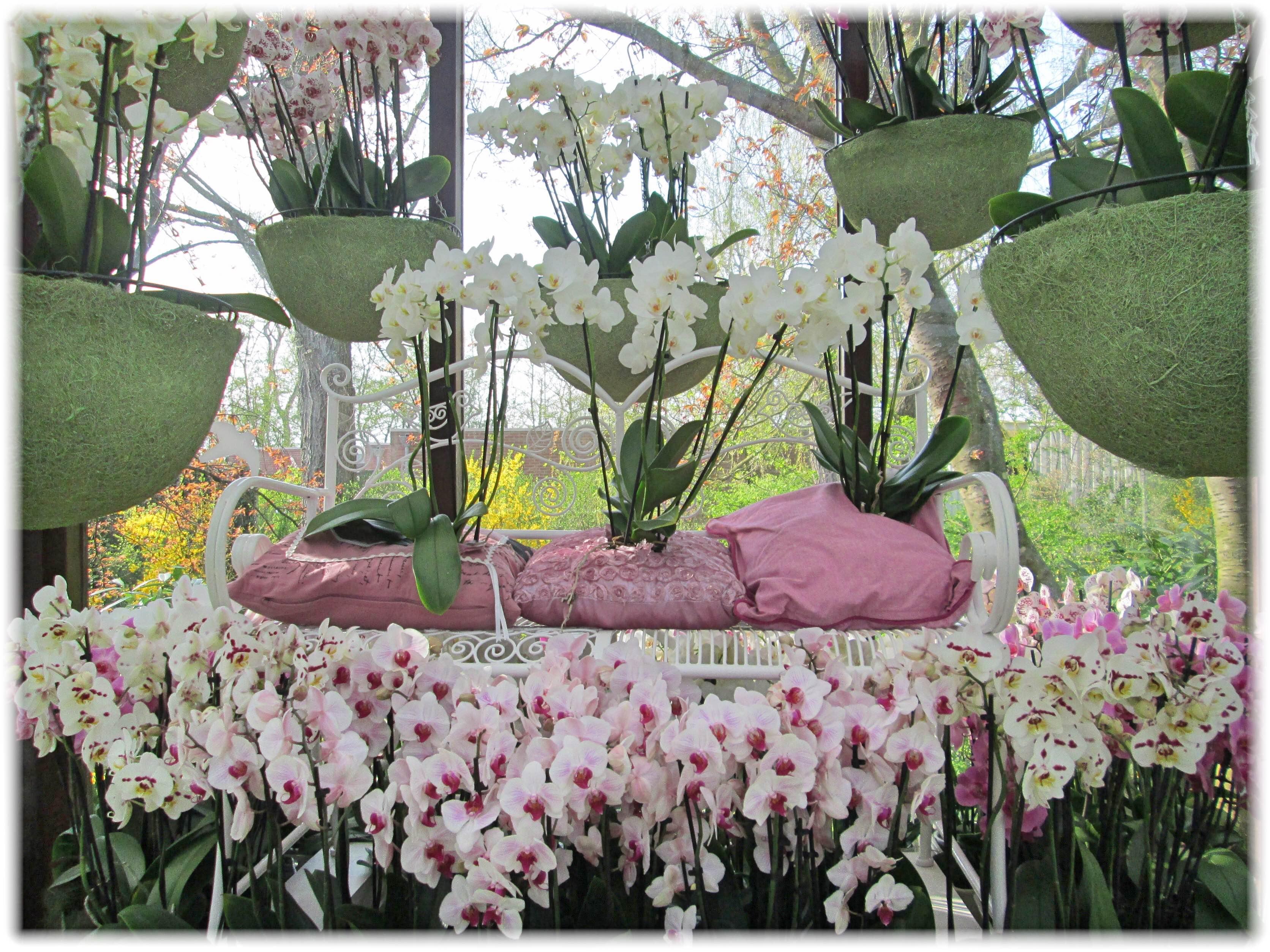 蘭の花のデコレーヨン
