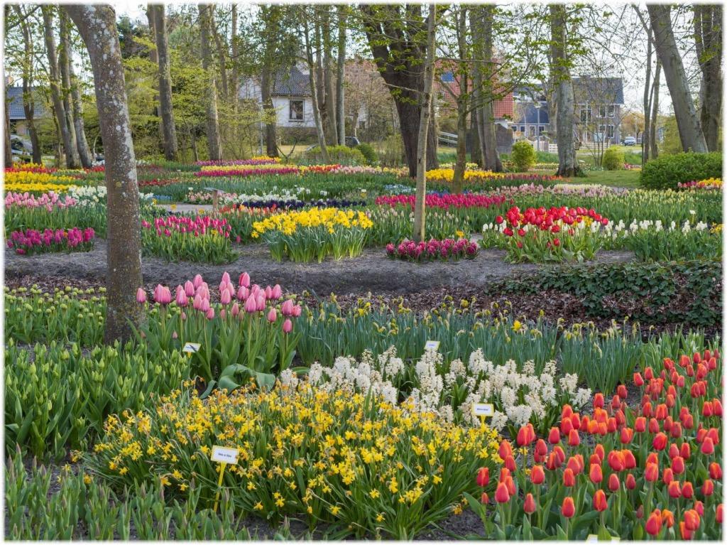 アンナ・パヴロヴナ庭園