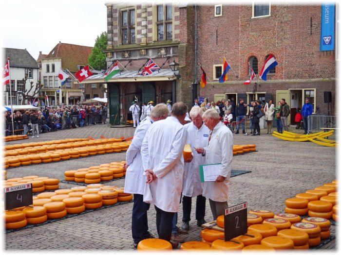 検査官によるチーズの評価