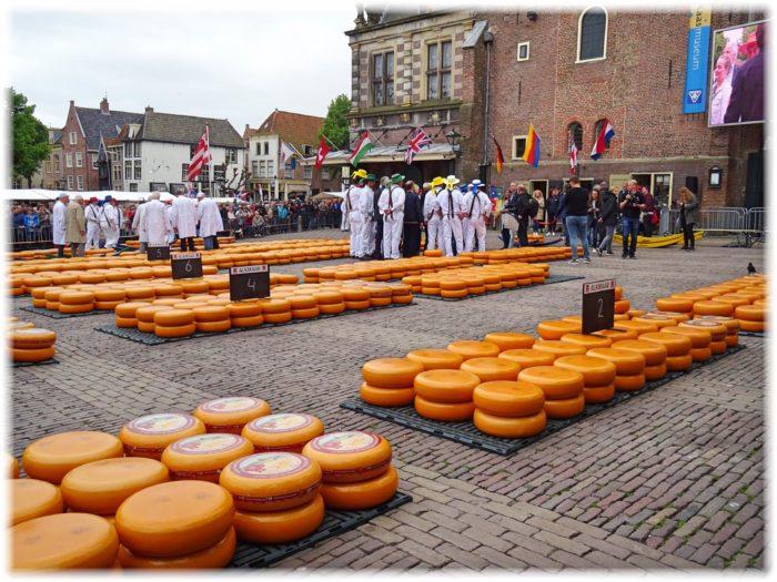 チーズマーケット開始の様子