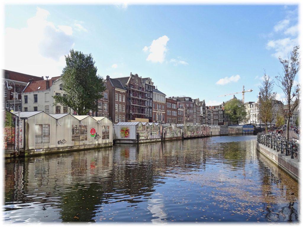 運河から見た花市場