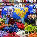 アムステルダム花市場を解説