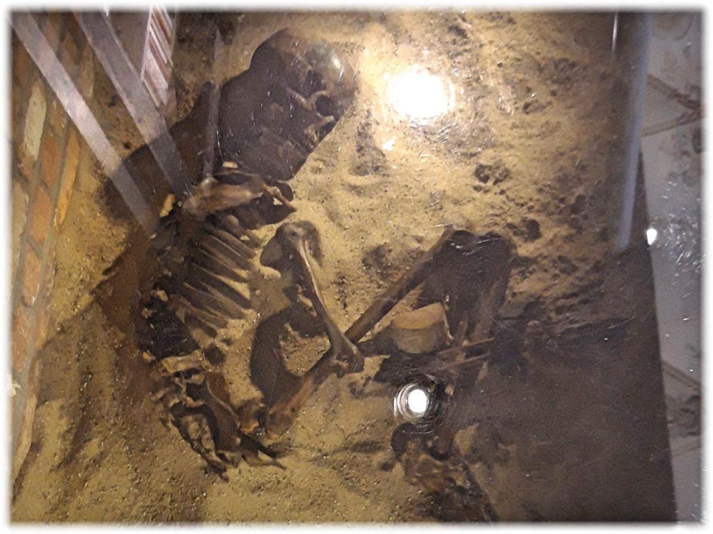 ワーンダース書店の床にある遺骨