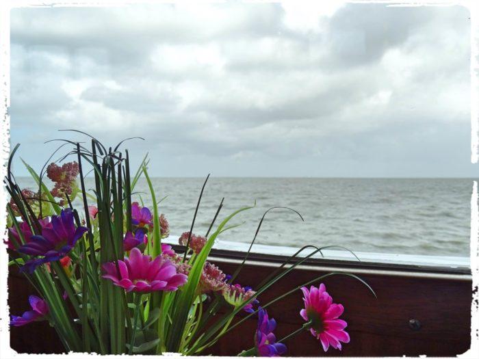 遊覧船からの眺め