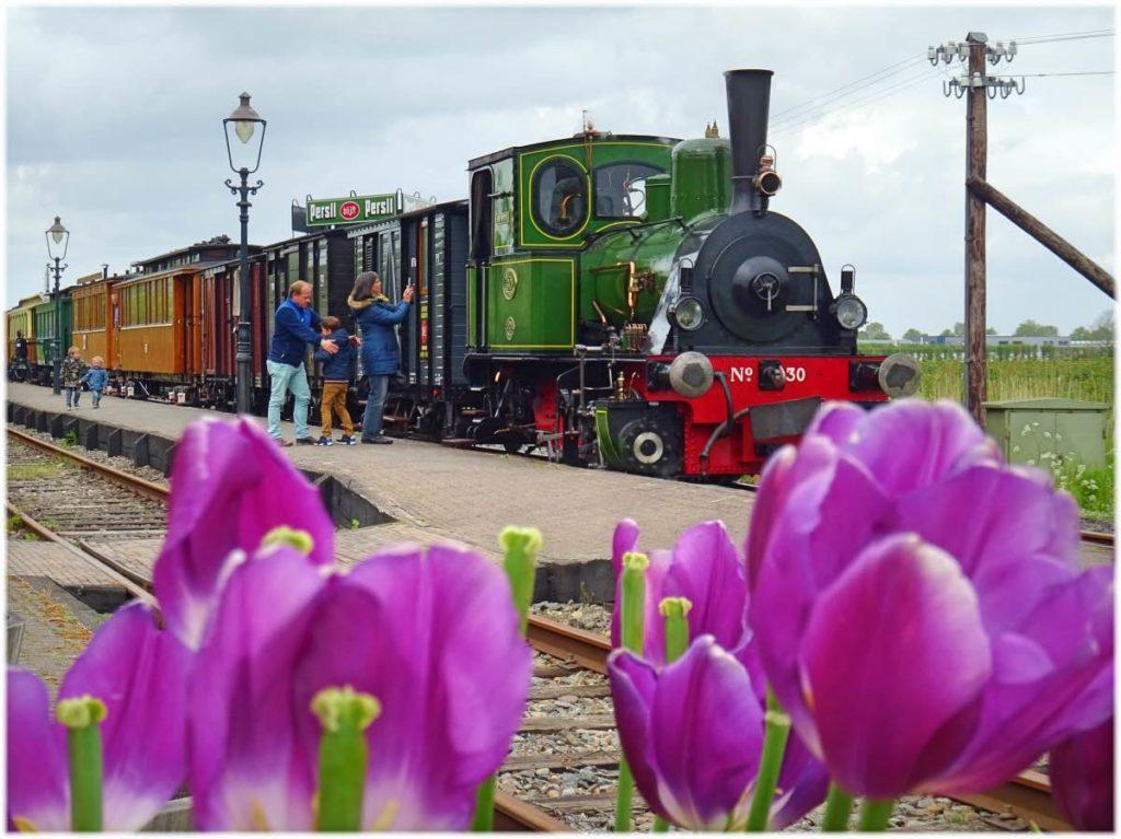 汽車でチューリップ畑の旅