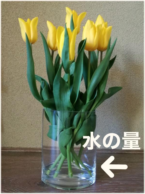 花瓶の水量