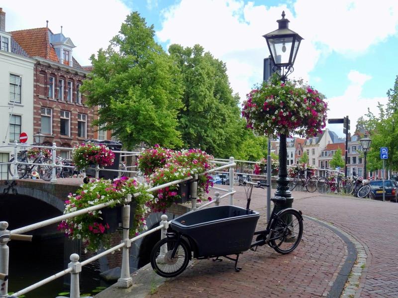 橋と花と自転車