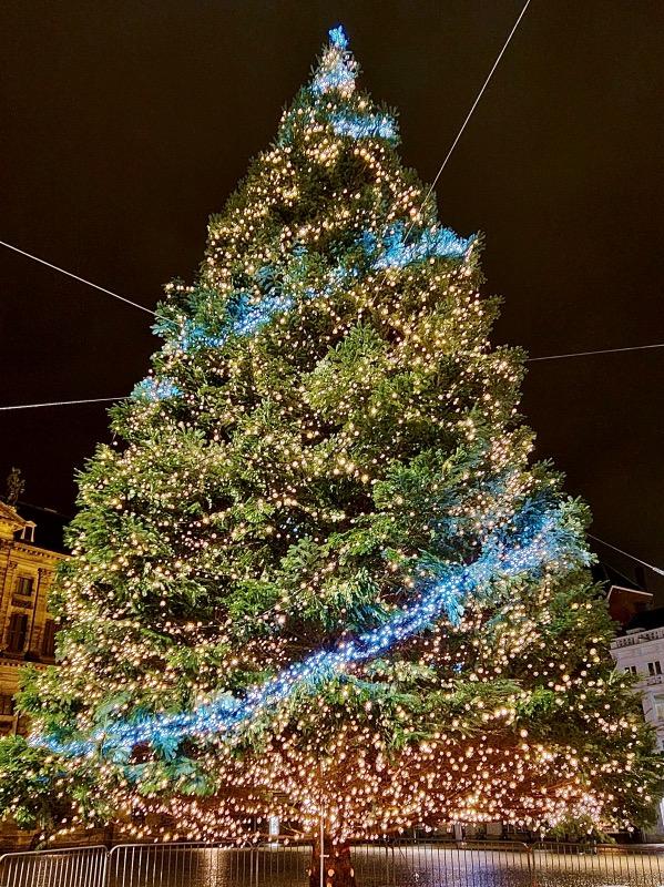 アムステルダムのクリスマスツリー