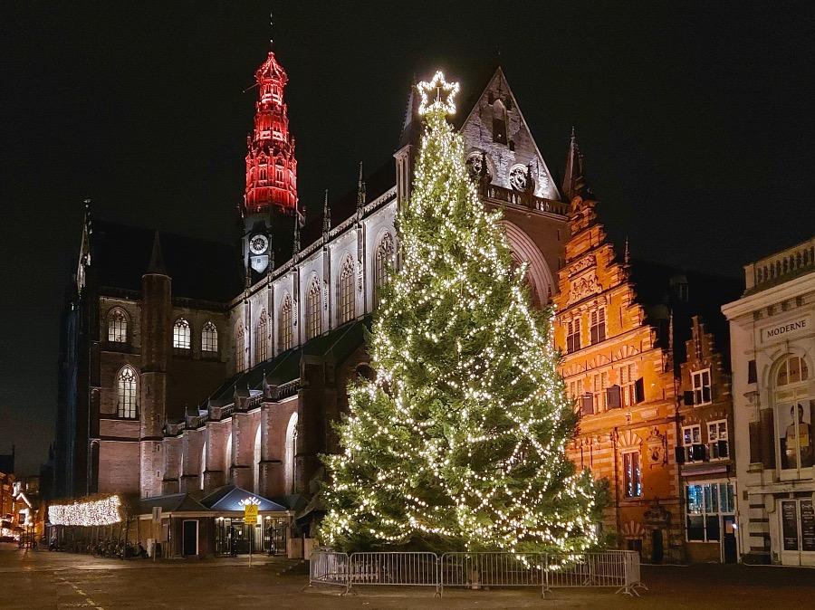 ハーレムのクリスマスツリー