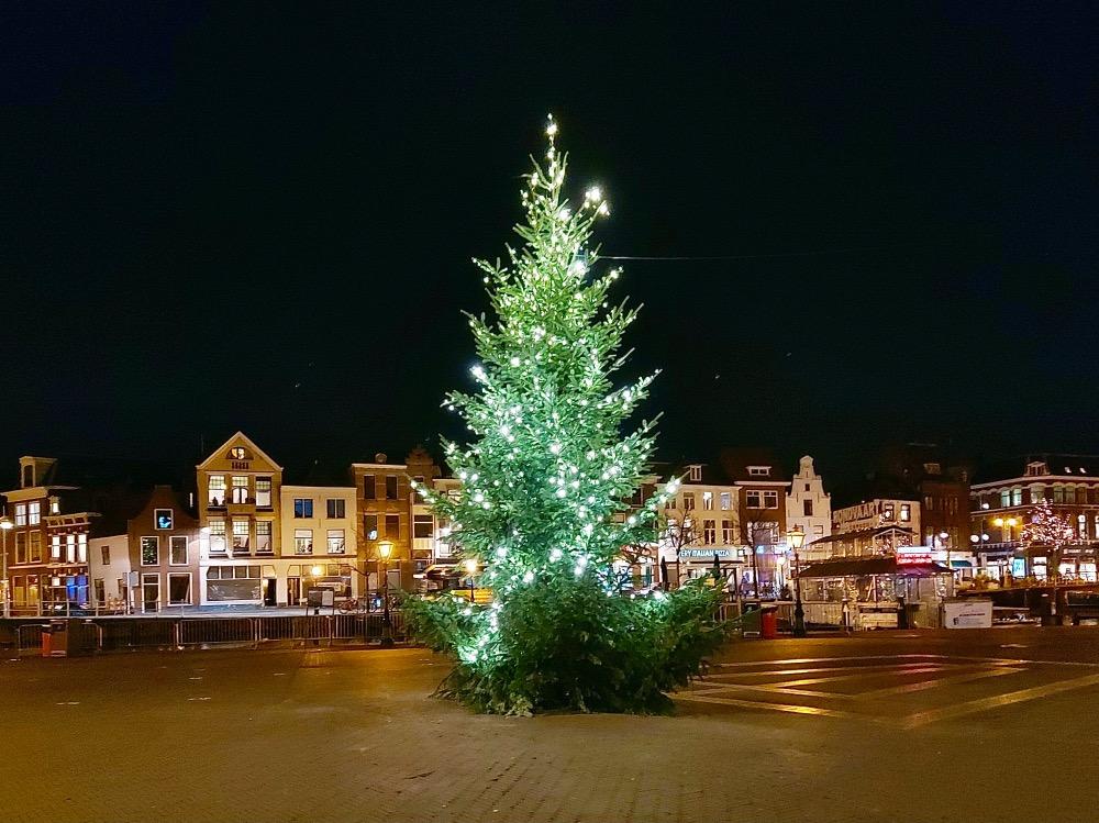 ライデンのクリスマスツリー