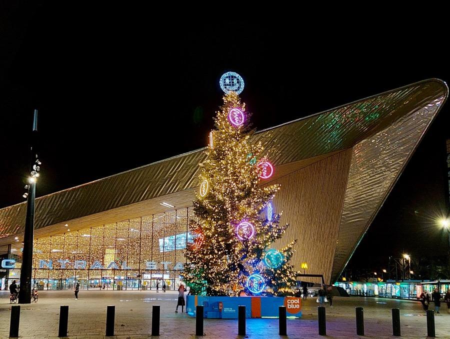 ロッテルダム駅前のツリー