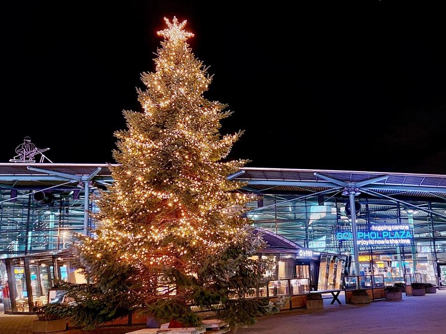 スキポール空港外のツリー