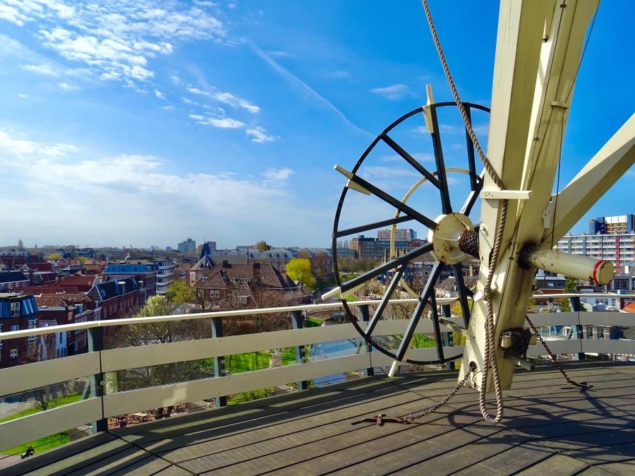 風車からの展望
