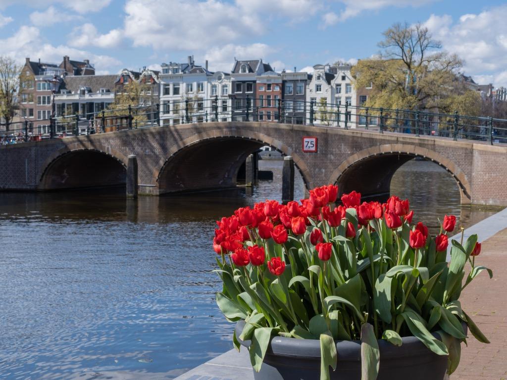 エルミタージュ美術館側の運河